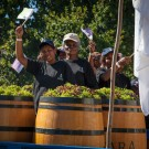 Asara at Stellenbosch Harvest Parade #2517