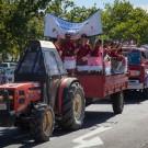 Stellenbosch Harvest Parade #2546