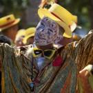 Stellenbosch Harvest Parade #2595