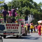 Delheim Wines at Stellenbosch Harvest Parade #2618