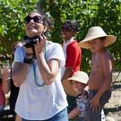 Grape picking at Grande Provence Harvest Festival 2012 #6941