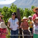 Vineyard tour at Grande Provence Harvest Festival 2012 #6999