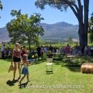 Lunch at Grande Provence Harvest Festival 2012 #7108