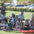 Black Cat Bones Concert at Backsberg Estate Cellars