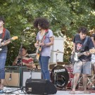 Ballistic Blues at Backsberg Picnic Concerts