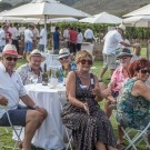 Franschhoek Summer Wines Festival at Leopard's Leap