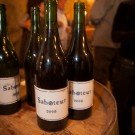 """Saboteur"" a new blend of Luddite Wines"