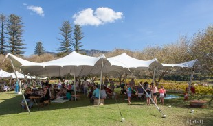 Constantia Food and Wine Festival
